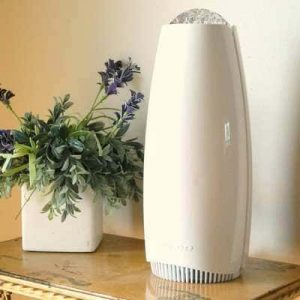 do air purifiers work