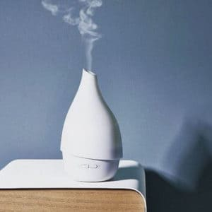 air purifier vs humidifier