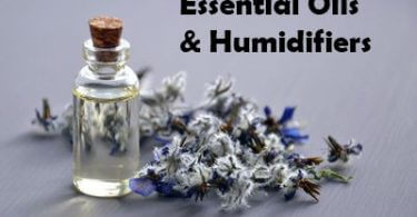 essential oil in humidifier