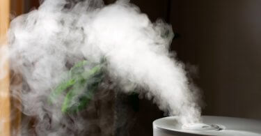 best-humidifiers-for-1000-square-feet-featured image